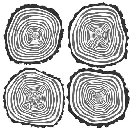 rings on a tree cut: Set of four vector tree rings background and saw cut tree trunk. Conceptual graphics. Isolated on white