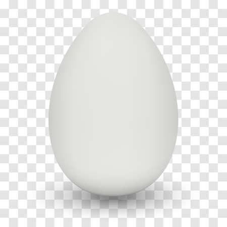 透明な背景に影と鶏の卵。  イラスト・ベクター素材
