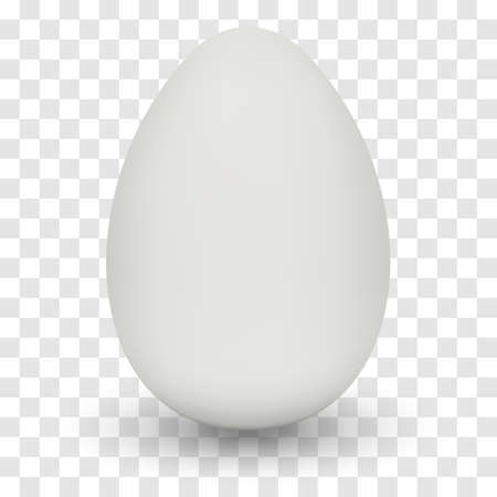 Chicken Egg with shadow on transparent background.