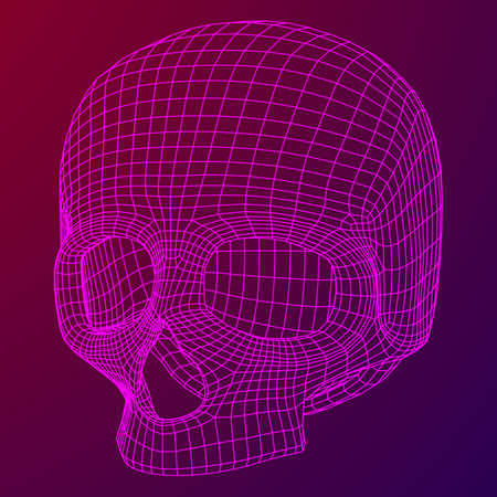 Skull Wire frame.