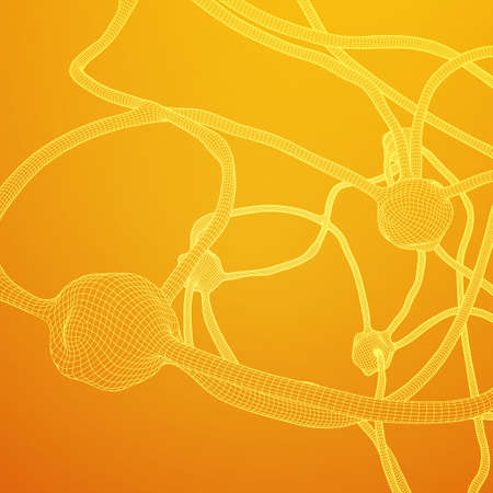 Neuron system wireframe mesh model Vector illustration.