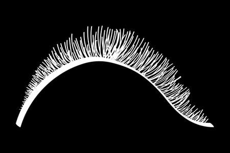 White false eyelashes. Mascara decorative element vector illustration