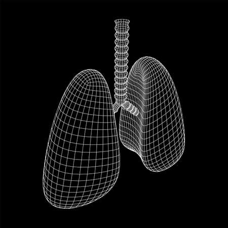 Lungs with trachea bronchi internal organ human. Pulmonology medicine science technology concept. Wireframe low poly mesh vector illustration Illustration