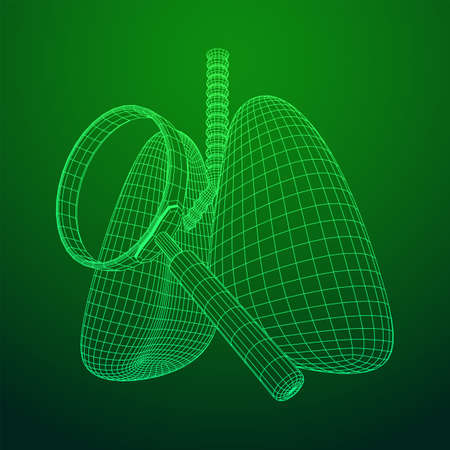 Lungs with trachea bronchi internal organ human with magnifying glass. Pulmonology medicine science analysis concept. Wireframe low poly mesh vector illustration