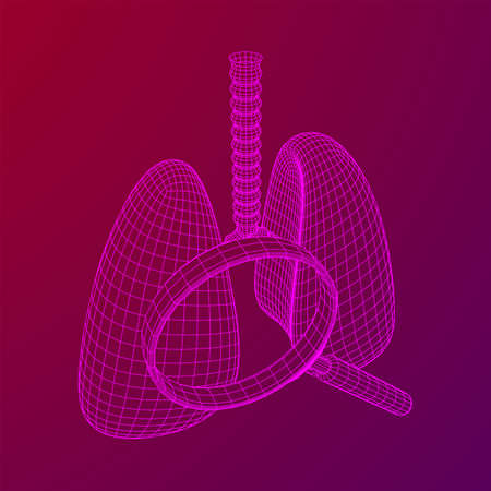 Lungs with trachea bronchi internal organ human with magnifying glass. Pulmonology medicine science analysis concept. Wireframe low poly mesh vector illustration Ilustração