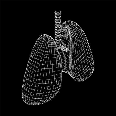 Lungs with trachea bronchi internal organ human. Pulmonology medicine science technology concept. Wireframe low poly mesh vector illustration Illusztráció