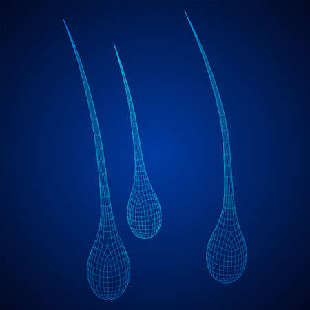 Hair follicle protect care cosmetic technology concept. Hair root structure repair shampoo salon treatment. Anatomy strands medicine trichology. Wireframe low poly mesh vector illustration