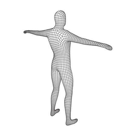 Male or man anatomy. Body biology medicine education concept. Wireframe low poly mesh vector illustration Vektorgrafik