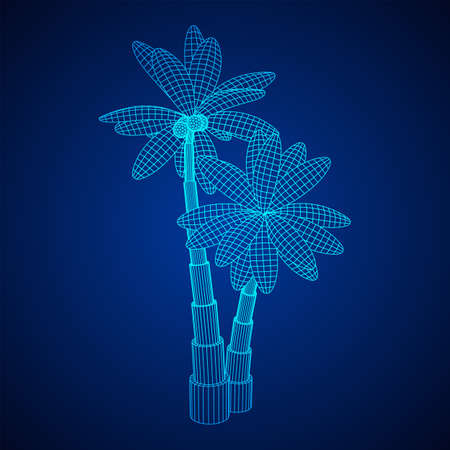 Coconut palm tree with leaves. Wireframe low poly mesh vector illustration. Illusztráció