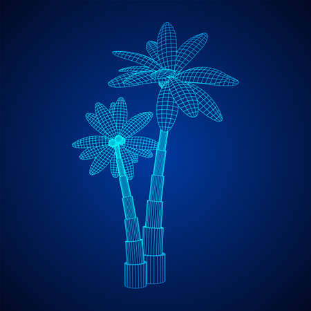 Coconut palm tree with leaves. Wireframe low poly mesh vector illustration.