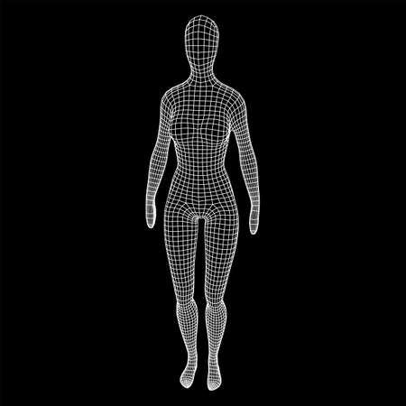 Female or woman anatomy. Body biology medicine education concept. Wireframe low poly mesh vector illustration. Illustration