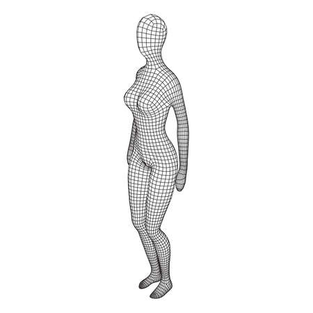 Female or woman anatomy. Body biology medicine education concept. Wireframe low poly mesh vector illustration. Иллюстрация