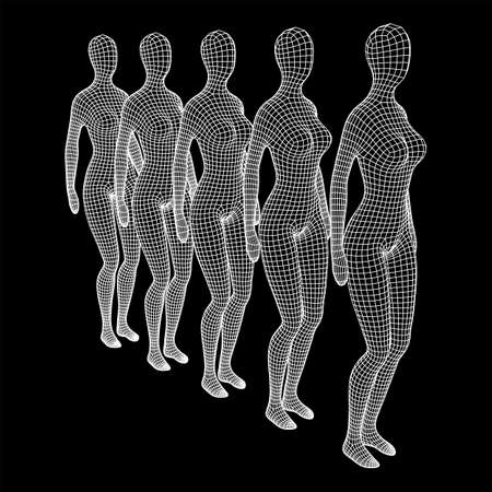 Female or woman queue. Body biology medicine education concept. Wireframe low poly mesh vector illustration. Иллюстрация