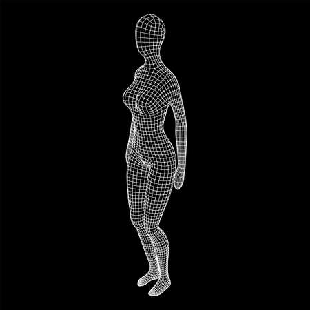 Female or woman anatomy. Body biology medicine education concept. Wireframe low poly mesh vector illustration. 向量圖像