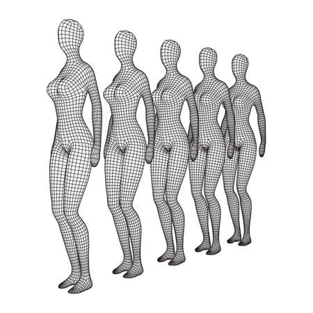 Female or woman queue. Body biology medicine education concept. Wireframe low poly mesh vector illustration.