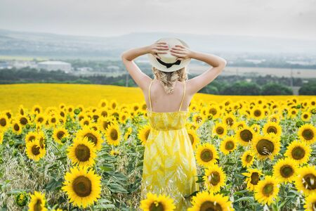 A young girl is standing in a field of sunflowers, holding a straw hat with her hands, view from the back. Standard-Bild