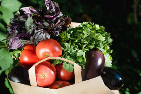 Paper bag with tomatoes, eggplants and herbs. Concept of biological, bio products, bio ecology, grown by yourself, vegetarians