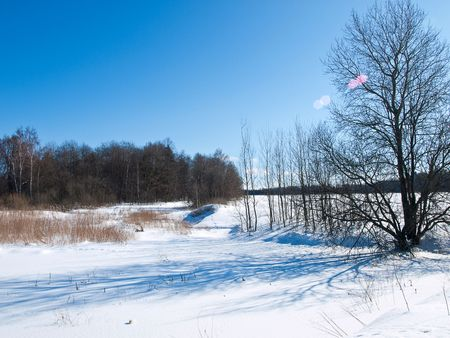 Snow fields and blue sky. Spring.