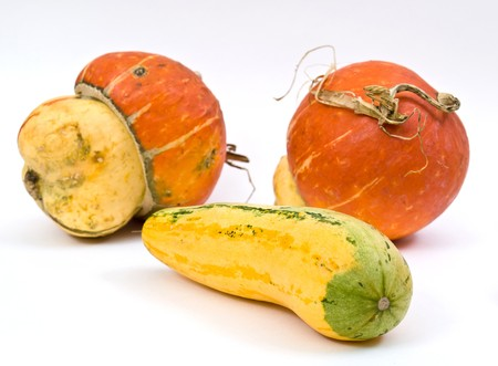 Mini Pumpkins Isolated on a White Background photo