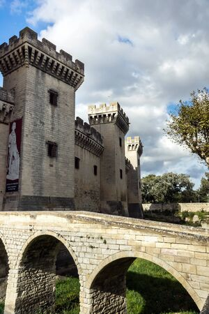 Medieval queen fortress in Tarascon, France. Summer day. Stock Photo - 17465738