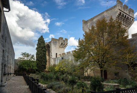 Medieval queen fortress in Tarascon, France. Summer day. Stock Photo - 17465741