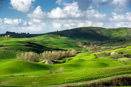Shadows on beautiful green hills in Tuscany, Italy. Standard-Bild