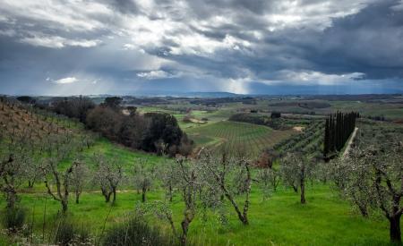 Stormy sky over green field, Tuscany, Italy photo