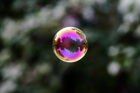 reflected: Soap bubble flying. City reflected in. Park. Stock Photo