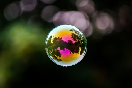 Soap bubble flying. City reflected in. Park. Stock Photo