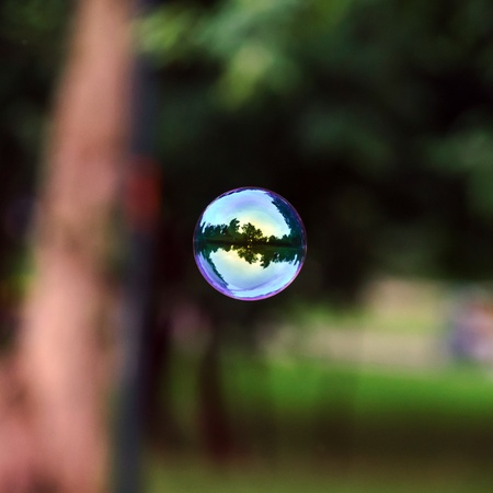 wet flies: Soap bubble flying. City reflected in. Park. Stock Photo