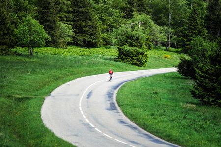 Beautiful road in green fields, natural landscape, Alsace