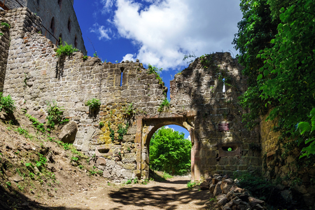 andlau: Medieval castle Andlau in Alsace, France, top of the hill