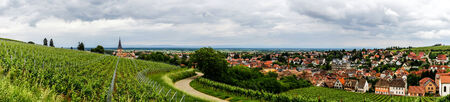 Alsace view from the top of hill, french nature