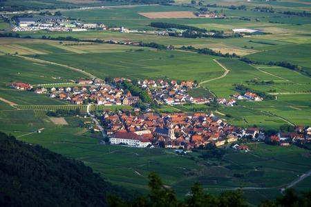 oiseau mouche: Vue panoramique sur la vol�e d'oiseaux en Alsace de l'abbaye du Mont Saint-Odile Banque d'images