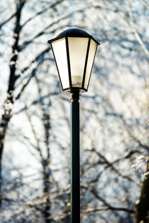 Street lantern in winter snowy city park. Seasonal concept. photo