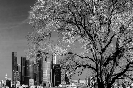 infrared: Picturesque view of the Moscow City in infrared, Moscow, Russia