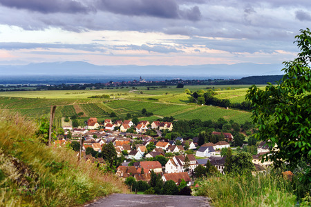overview: Bird-fly overview to small village in Alsace, France. Summer day.