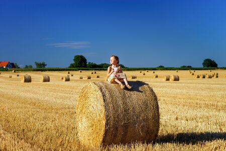 hayrick: Funny cute little girl posing on the haystack in summer field, Alsace, France