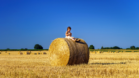 Funny cute little girl posing on the haystack in summer field, Alsace, France