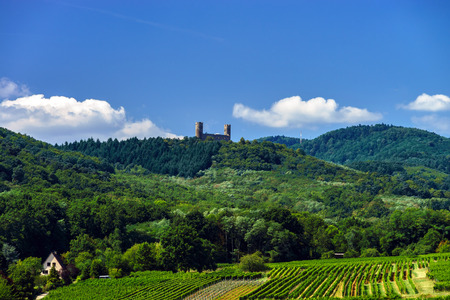 andlau: Old medieval castle Andlau on the top of the hill, France Stock Photo