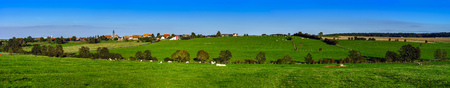 pasturage: Beautiful green pasturage in Alsace, France, panoramic view