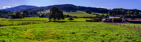 colorized: Beautiful colorized autumnal hills and meadows in Alsace, France Stock Photo