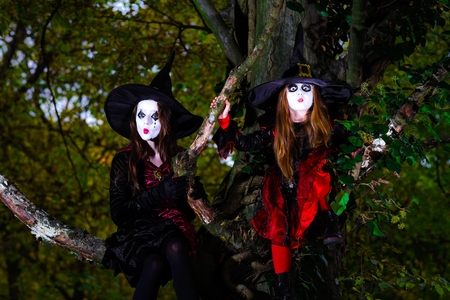 woodland  horror: Two witches sitting on the tree  in Halloween forest Stock Photo