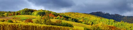 andlau: Beautiful panoramic view to Andlau, France, stormy weather and vivid colors of autumn Stock Photo