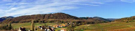 andlau: Andlau castle panoramic view through the vineyard, France