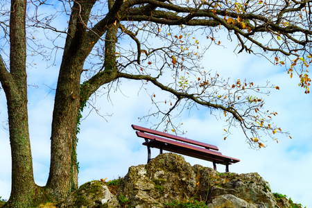 soltería: Único banco de la soledad en la colina sobre el árbol, otoño de concepto Foto de archivo