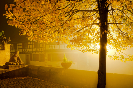 Beautiful fog on the street of old french village Andlau