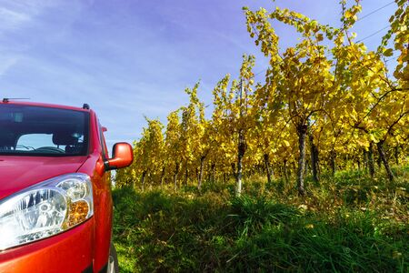 wine road: Red car in yellow vineyard, Alsace, France