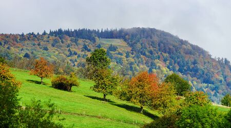 hiils: Beautiful green hiils of Alsace, France, autumnal view Stock Photo