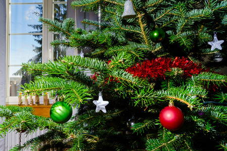 cosiness: Indoor Christmas and New Year decoration, tree and toys